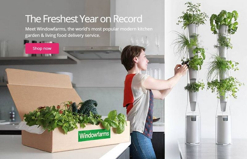 26 indoor gardening innovations for Indoor gardening trends