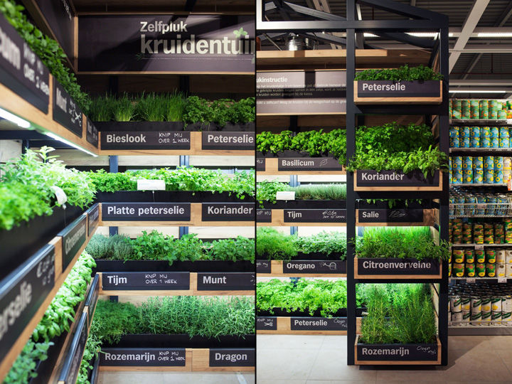 grocery store herb gardens instore farming. Black Bedroom Furniture Sets. Home Design Ideas