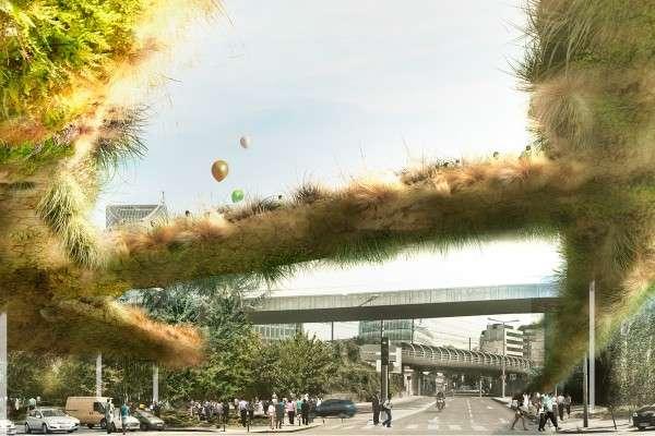 Overgrown Pedestrian Overpasses