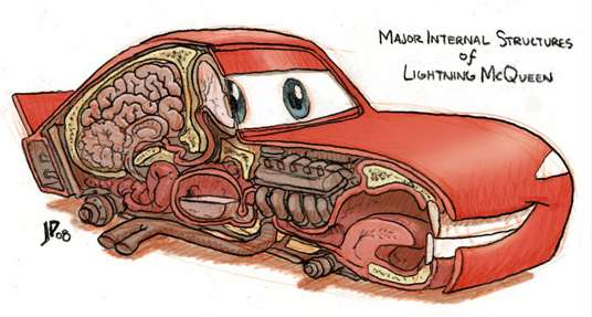 Animated Car Anatomy