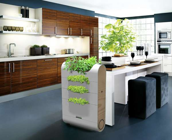 Plantable Compost Bins