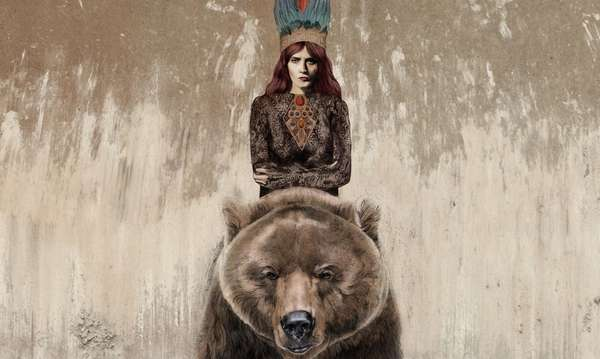 Husky Hipster Bear Drawings