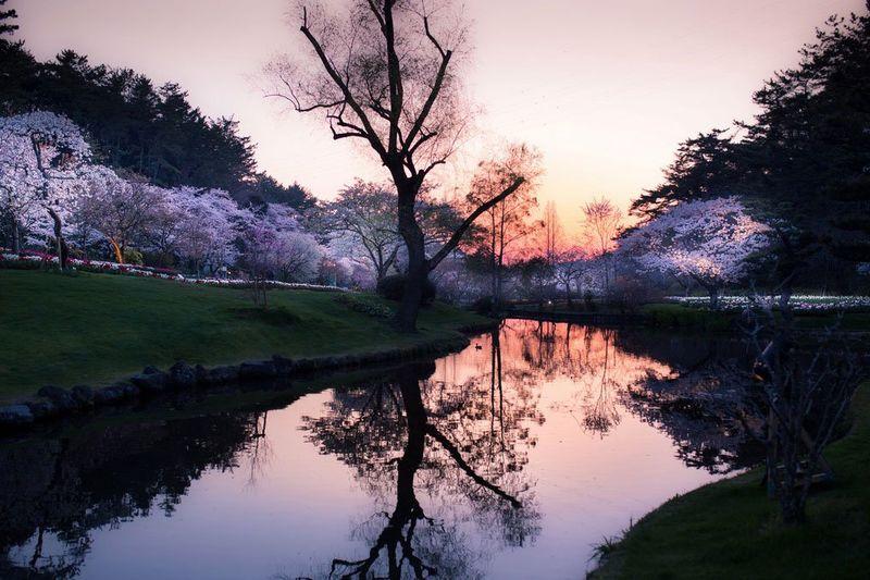 Japanese Landscape Photography
