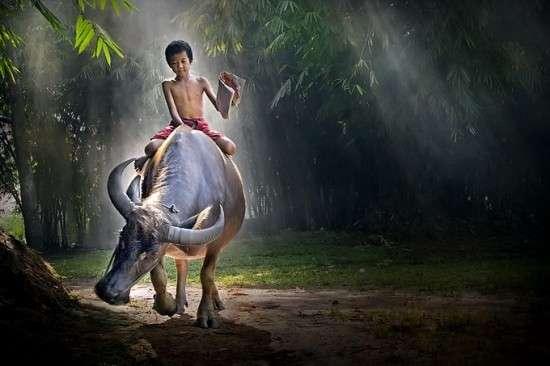 Magical Landscape Photography