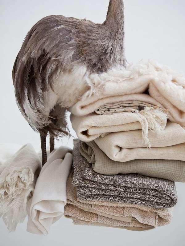 Headless Bird-Topped Photography