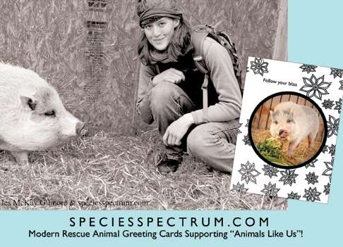 Jes McKay Gilmore, Creator of Species Spectrum (INTERVIEW)