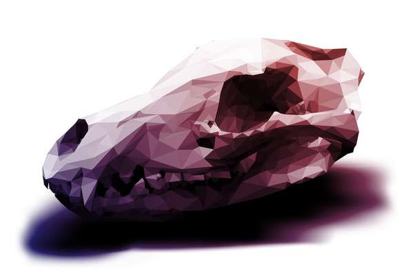 Purple-Hued Polygonal Skulls