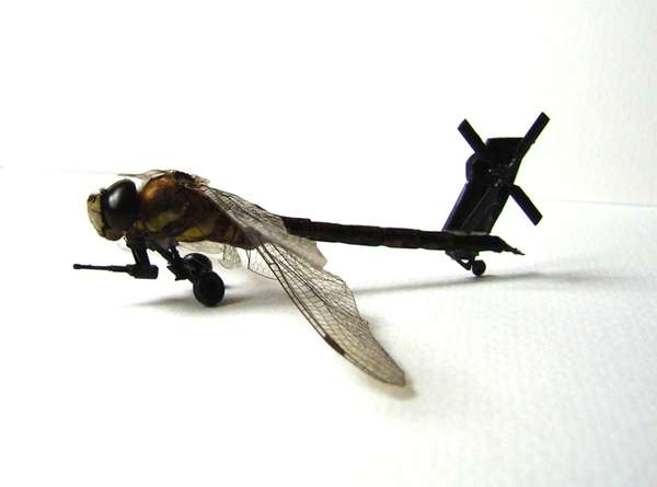 Dragonfly Helicopters