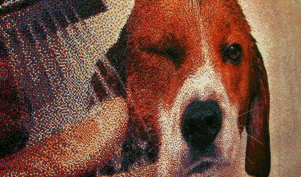 Sprinkled Pointillist Paintings