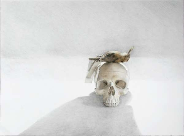Dead Bird Artistry