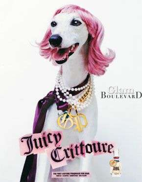 Juicy Couture Dog Line