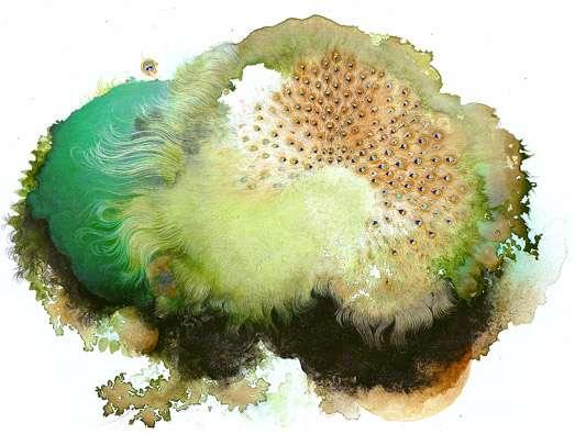 Microscopic Minimalist Art