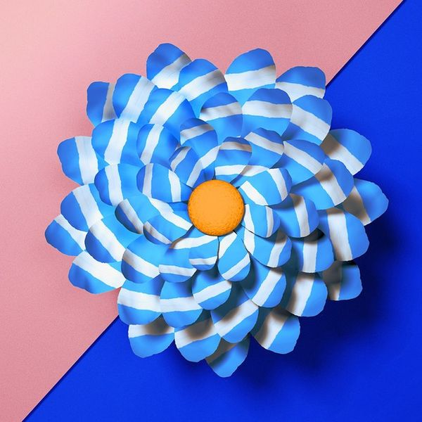Patterned Flower Photography