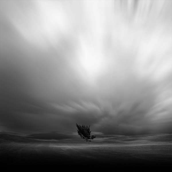 Kevin Saint Grey Landscapes