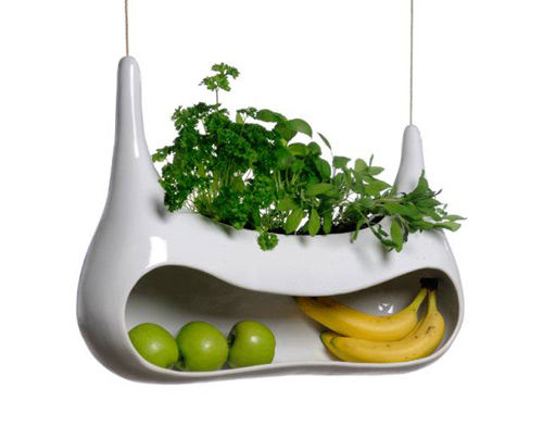 Sculptural Produce Pods