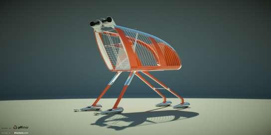 Avant-Garde Grocery Carts