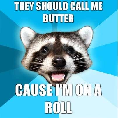 Witty Mammal Memes
