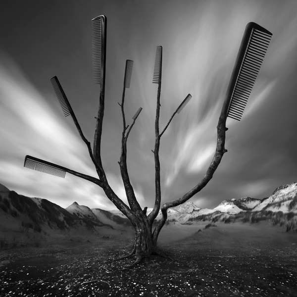 Surreal Monochromatic Landscapes
