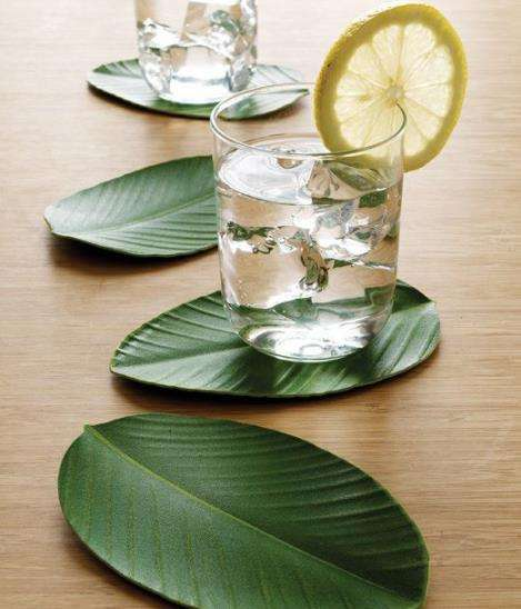 Lovely Leaf Drink Coasters