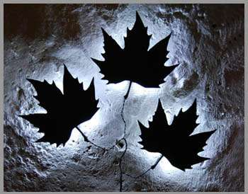 Luminescent Leaf Lights