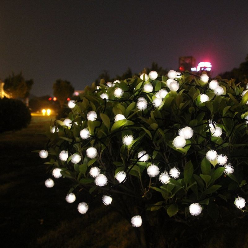 Eco-Friendly Lighting Solutions