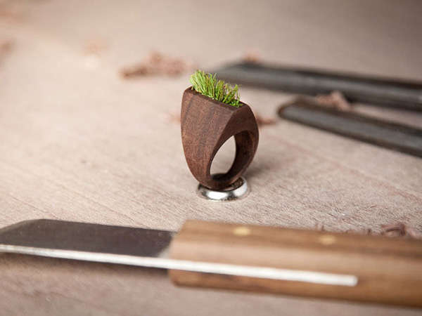 Grass-Growing Timber Accessories