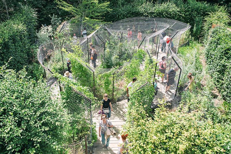 Imprisoned Plants Installations