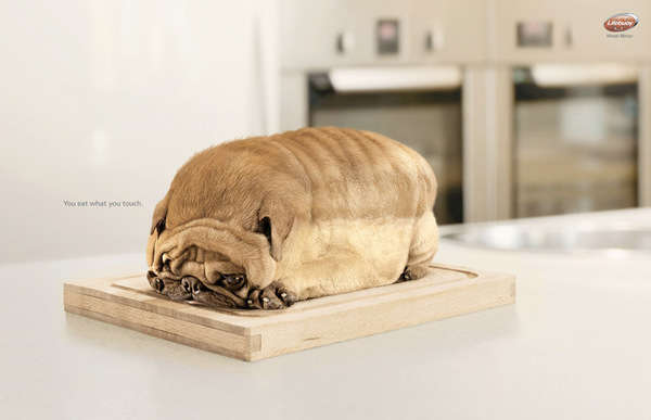 Food-Shaped Animal Ads
