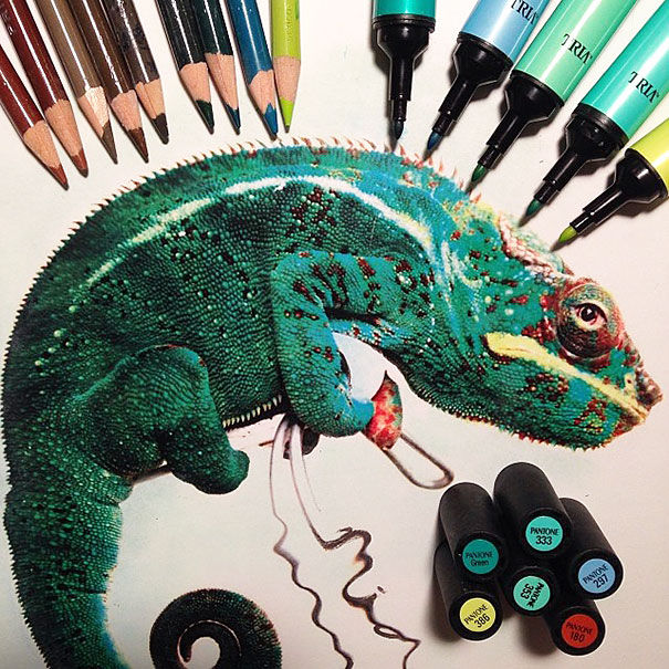 Hyperrealistic Animal Drawings