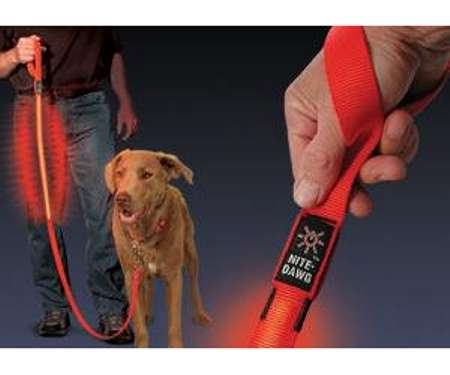 LED Pet Controls