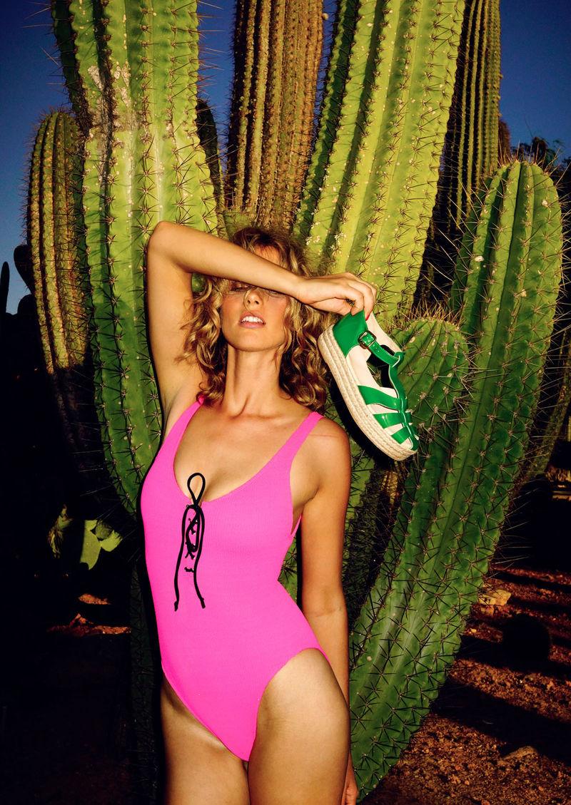 Charming Cactus Lookbooks