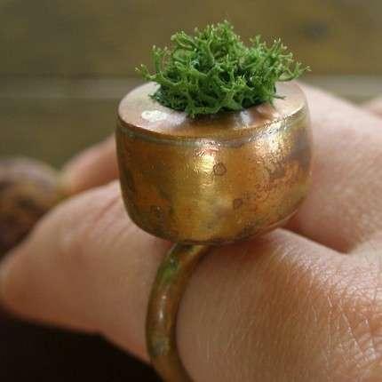 Fingertip Gardens