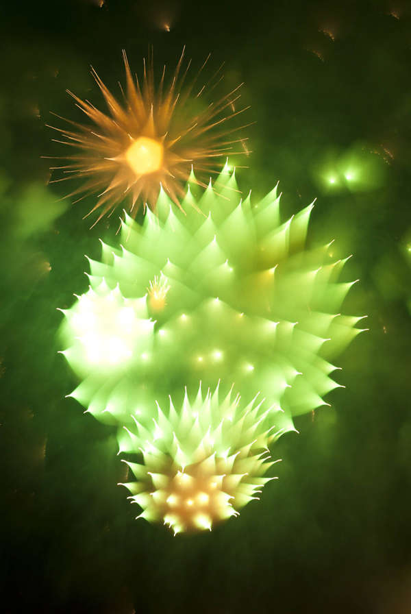 Polychromatic Exploding Firework Captures