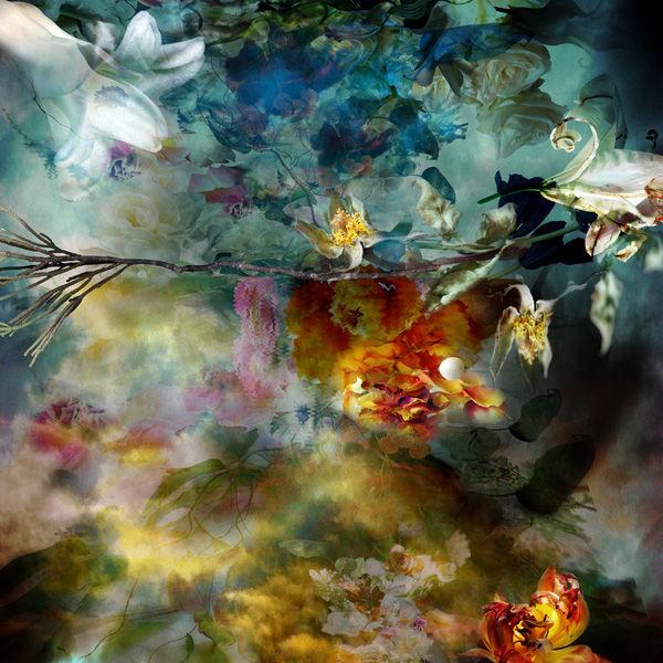 Melting Floral Photography Art