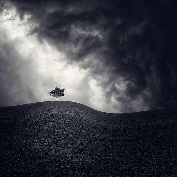 Epic Fantasy Photography