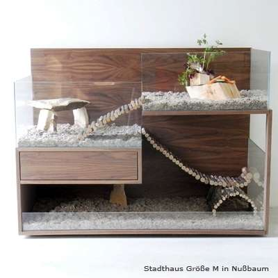 Luxurious Rodent Homes