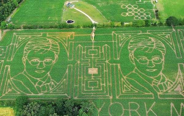 Wizard Visage Labyrinths