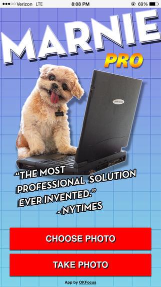Canine Photobomb Apps