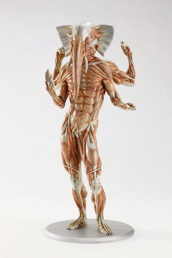 Mythical Musculature Sculptures