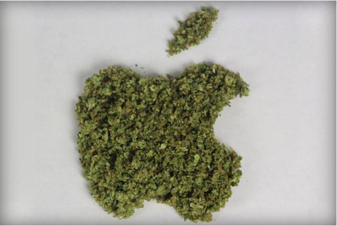 Cannabis Social Apps