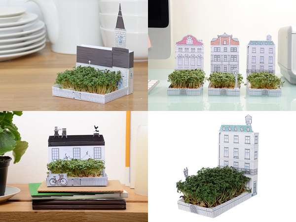 Miniature Matchbox Gardens