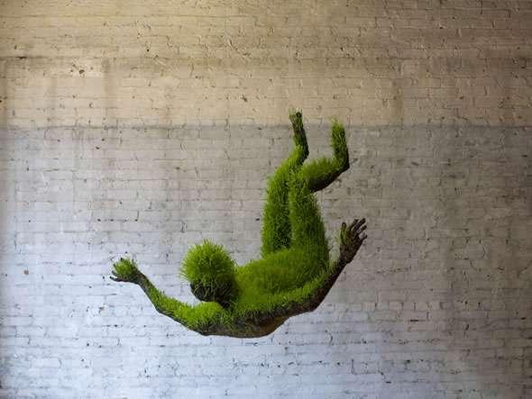 Human Plant Performances