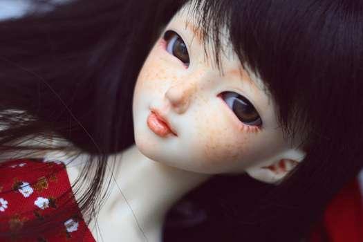 Realist Manga Dolls