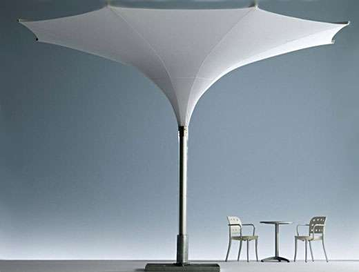 Trumpet-Shaped Parasols