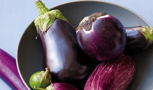 Fleshy Eggplant Hybrids