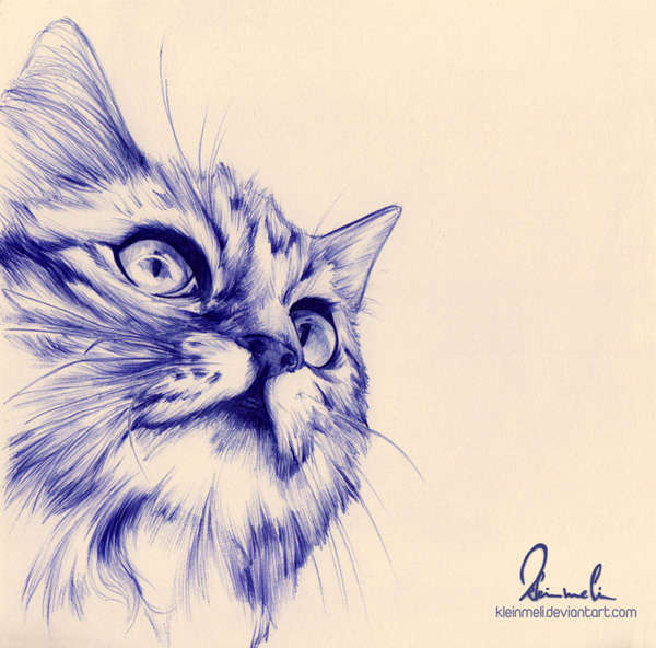 Animal Ballpoint Pen Portraits