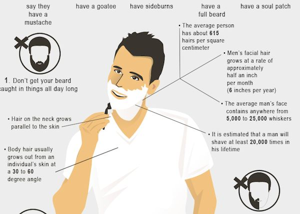 Male Shaving Infographics