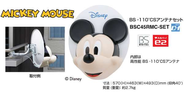 Disney Satellite Dishes
