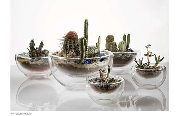Micro Gardens as Living Art