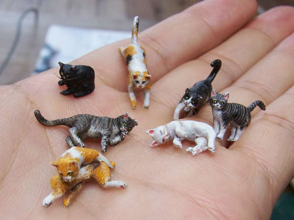 Miniature cat models